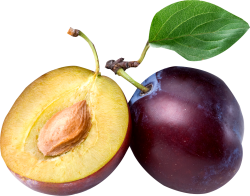 plum_png86735